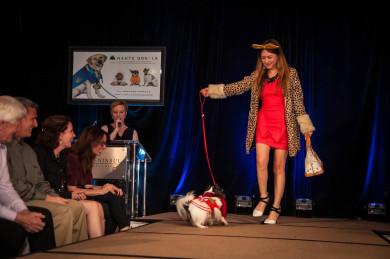 Cutest Fashion...Haute Dog Runway Show